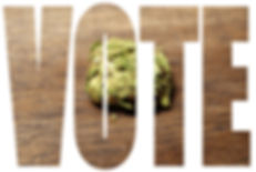 The word VOTE with a cannabis bud in the background