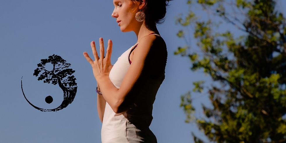The Balance of Yin and Yang (wöchentlicher Yogakurs: 6 Einheiten)