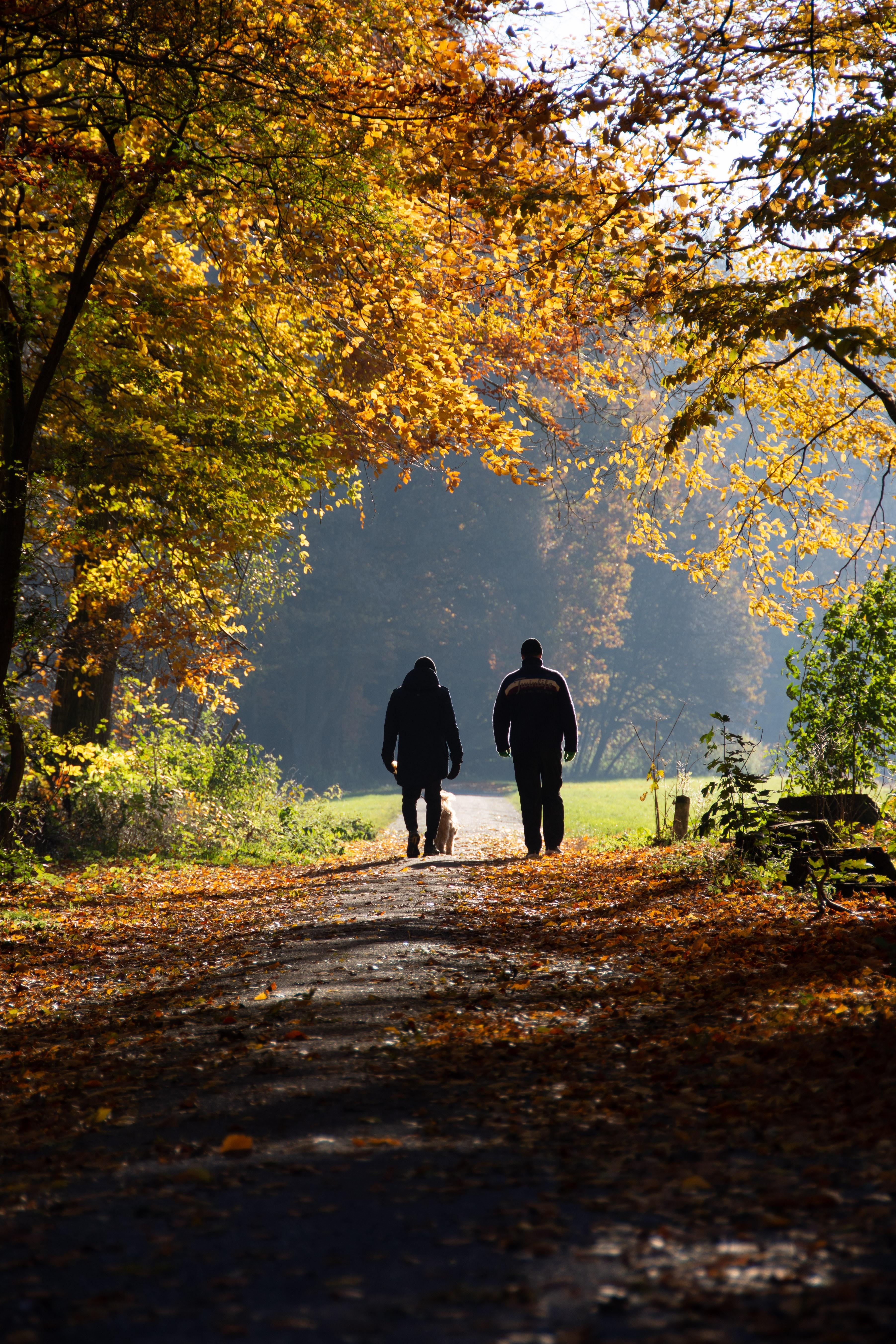 Walk coaching