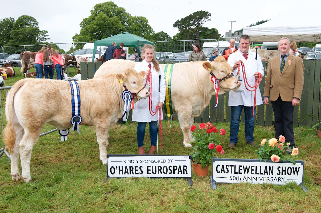 Best Cow & Calf: Ballymacan Isobel