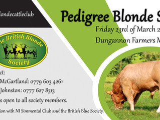 N.I Blonde Sale to be held in Dungannon
