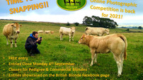 Online Photographic Competition is back...