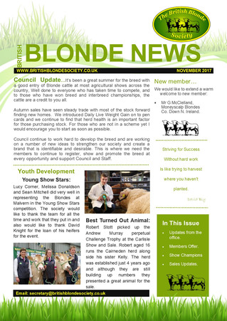 Blonde News - November Newsletter