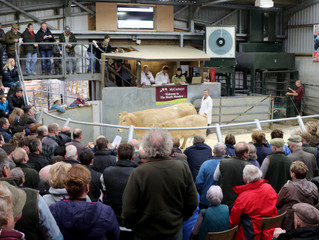Worcester Spring Show & Sale - Entries Close Friday 9th March 2018