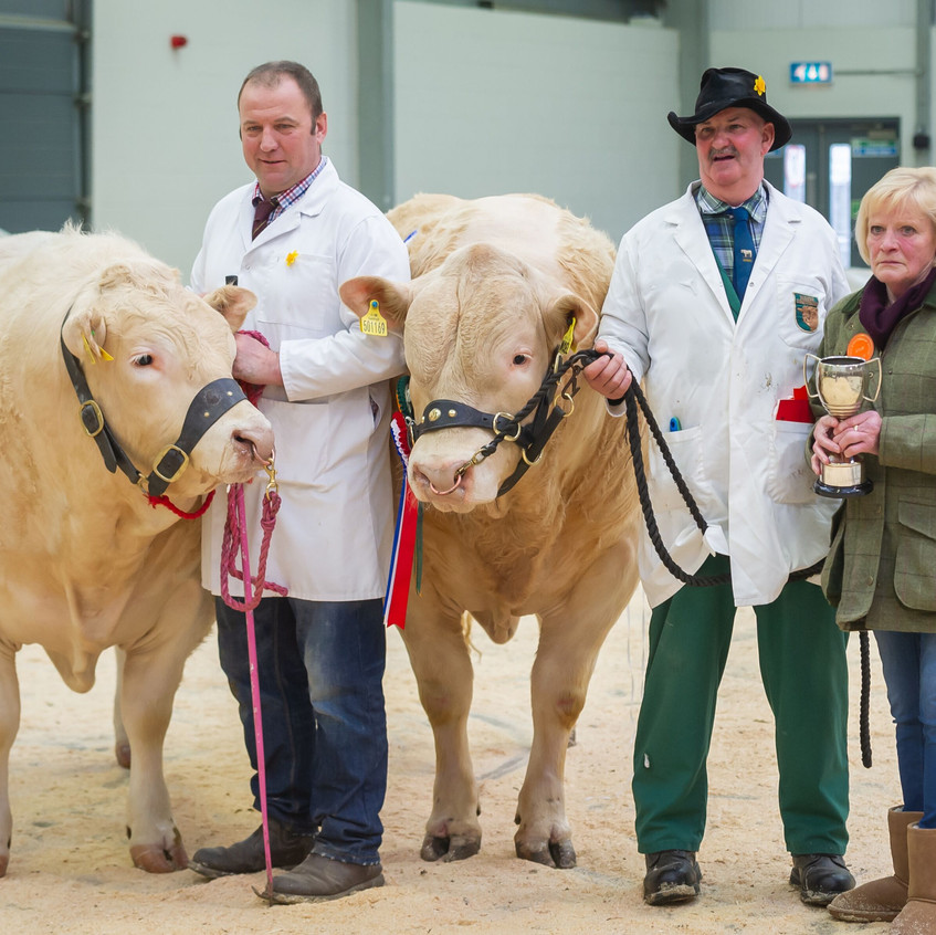 Champion and reserve Carlisle March 19
