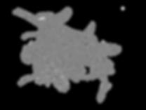 protea_logo_freigestellt.png