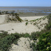oostvoorne strand.jpg
