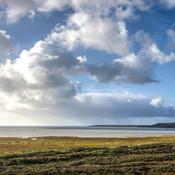oostvoorne groen strand.jpg