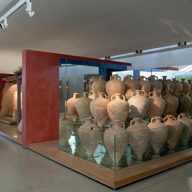 Amphoralis 6
