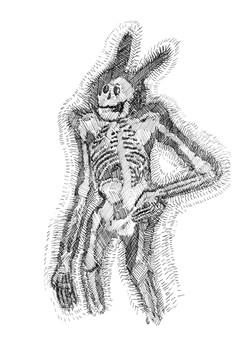 le squelette à grandes oreilles