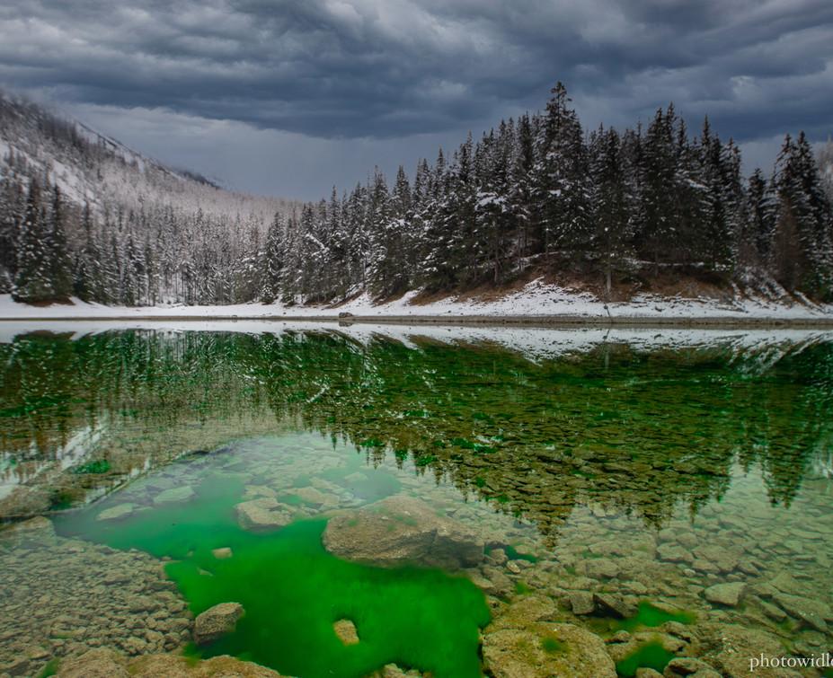 Grüne See