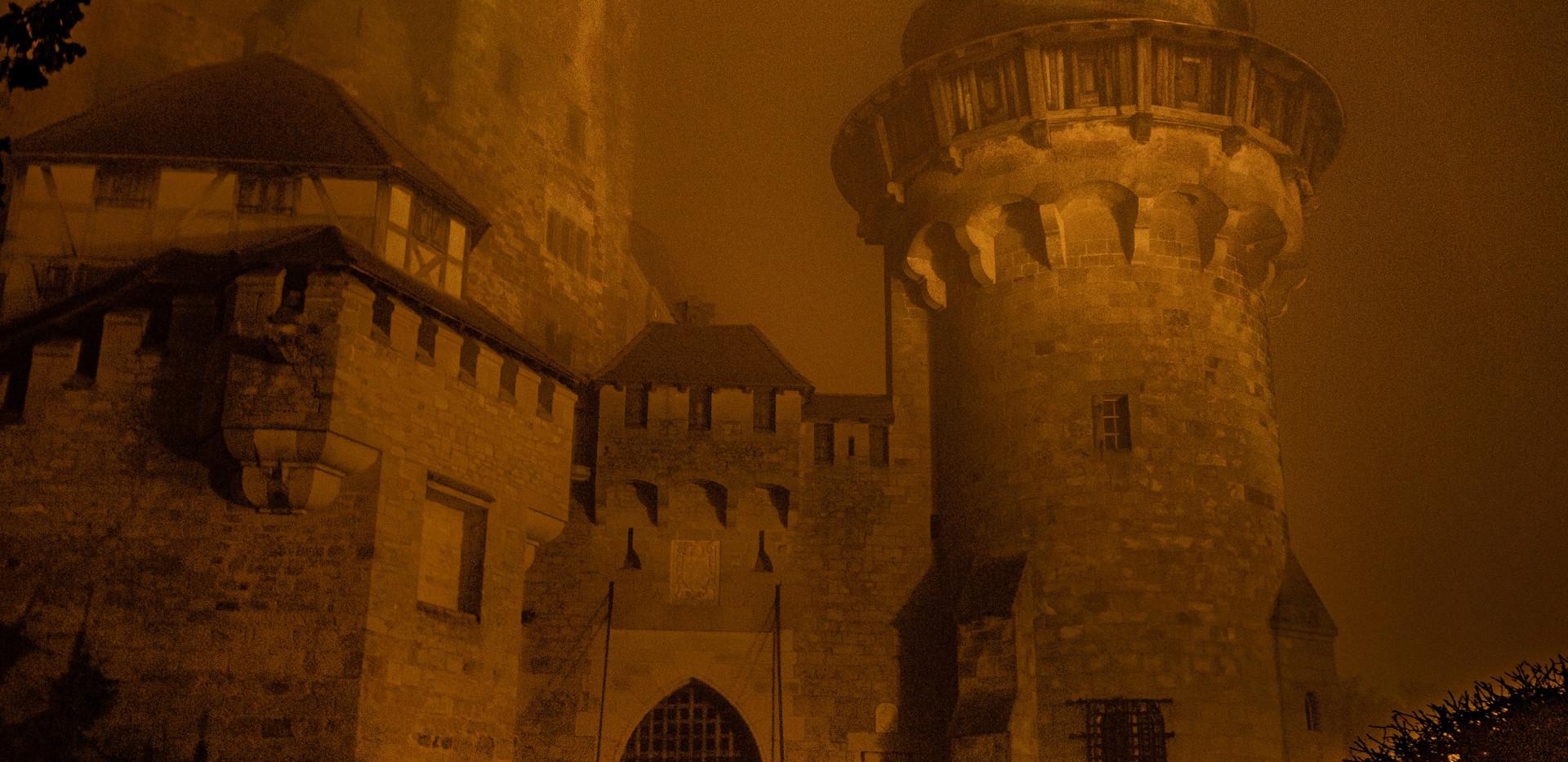 Burg Kreuzenstein bei Nacht und Nebel