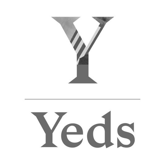 Logo YEDS.jpg
