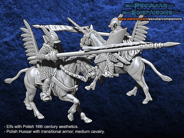 Polish Elfs - Mounted Mercenary/Commander