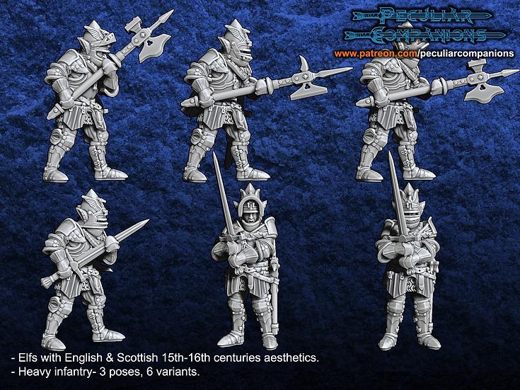 Anglo-Scottish Elfs - Heavy Infantry