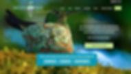 Secure-Nest-homepage.jpg
