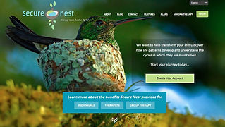 Secure-Nest-homepage.jpg