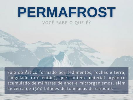 Alfabetização Climática: Você sabe o que é Permafrost?