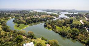 O que é geosmina e a crise na qualidade da água do Rio