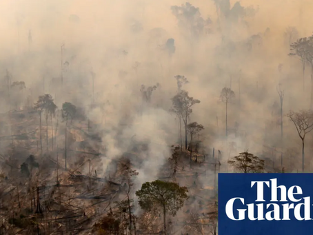 Brasil bate recorde em desmatamento em uma década