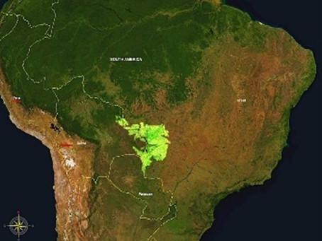 Será que o prelúdio do Pantanal fará o Brasil se transformar no maior deserto tropical?