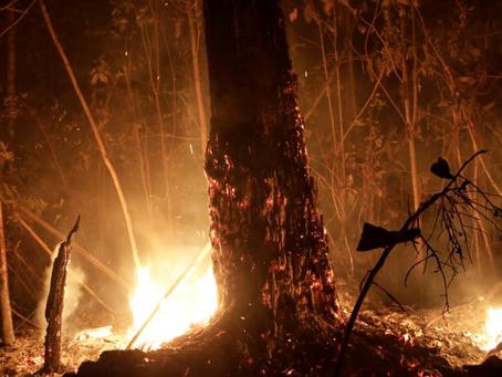 Estados brasileiros pedem ajuda militar para combater incêndios