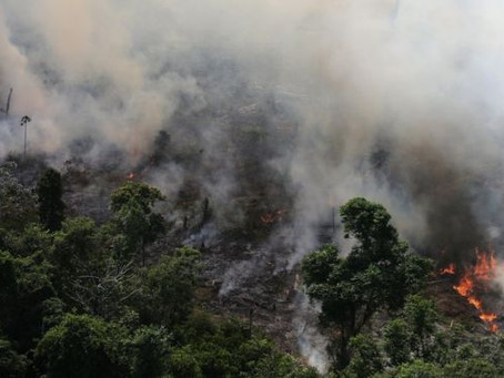 De #BoycottBrazil a Amazônia no G-7