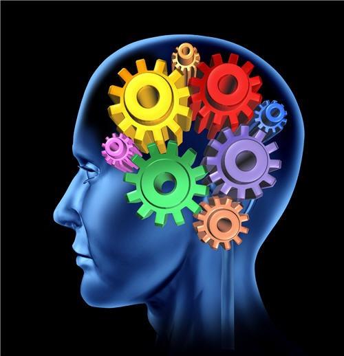 Relation entre le cerveau et le bonheur