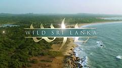 Wild Sri Lanka - Coast of Giants