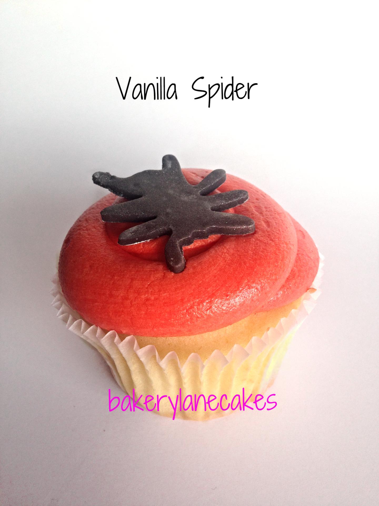 Vanilla Spider