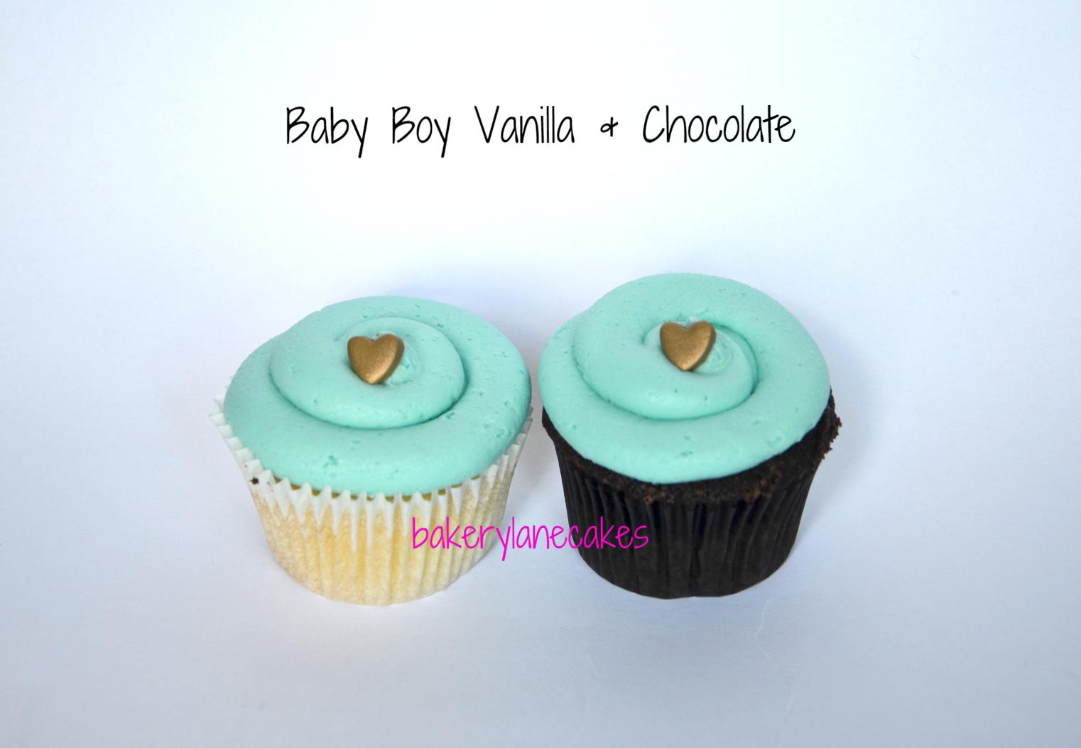 ~ Baby Boy Vanilla & Chocolate ~