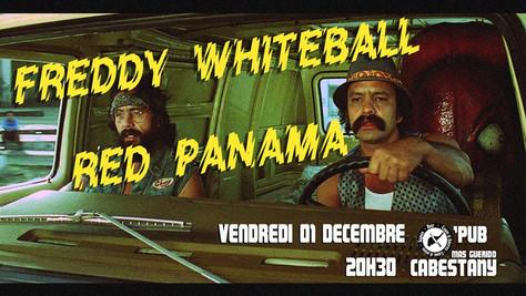01/12 Freddy Whiteball / Red Panama Live au O'PUB, Cabestany (66).