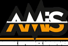 AMIS WEB.png