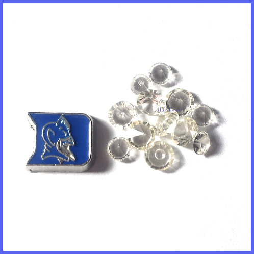Blue Devil Floating Memory Locket Charm + Clear Gems