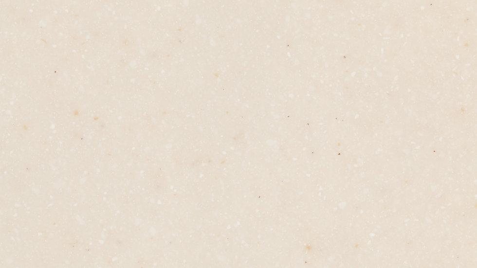 AS642 Seashell