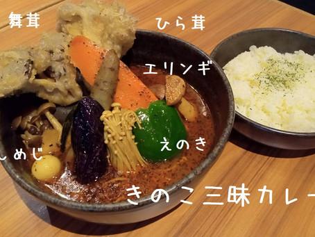 9月のカレー ピカンティ札幌琴似店、円山ピカンティ