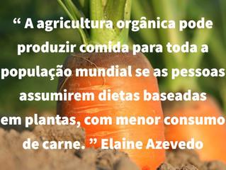 Agricultura orgânica é tema de artigo na Diplomatique