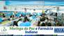 Moringa da Paz e Farmácia Indiana