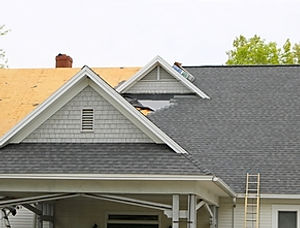 New construction roof.jpg
