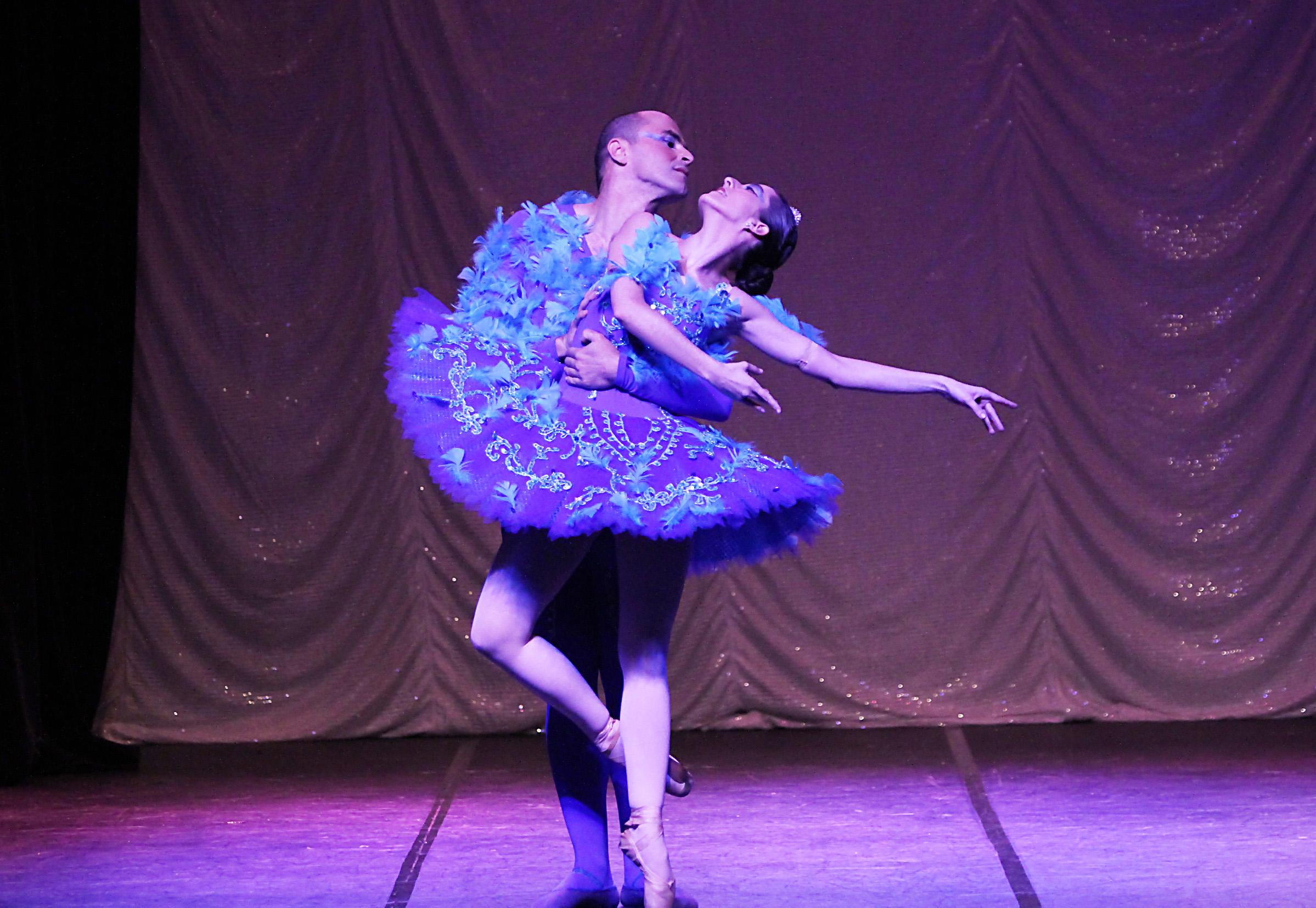 O Pássaro Azul - 2011