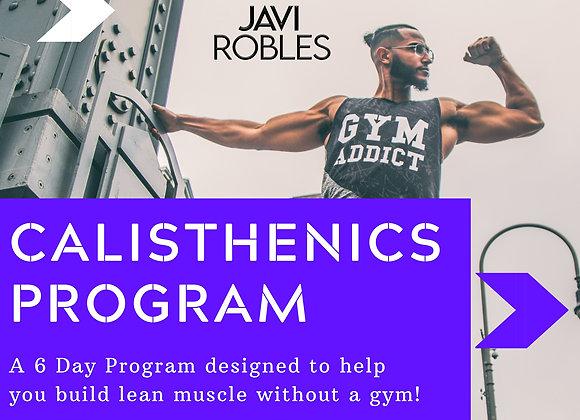 6 Day Calisthenics Workout