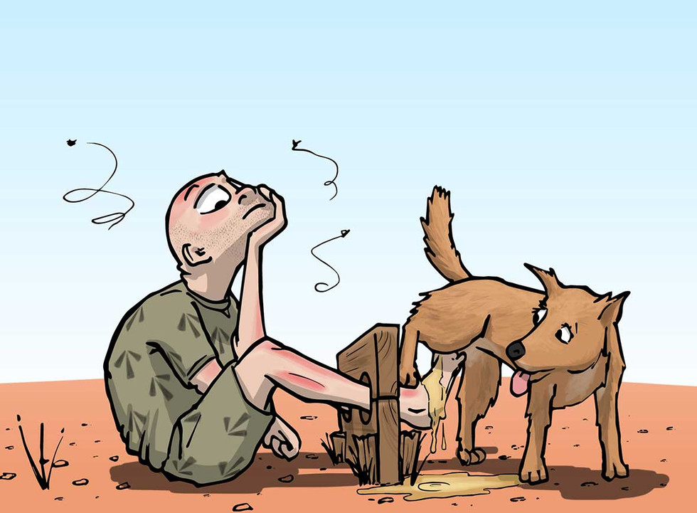 Outback Stocks