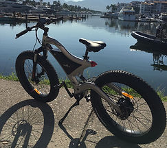 bicicleta eléctrica bici montaña MTB fat tire llanta gorda sport bike ebike méxico mexico