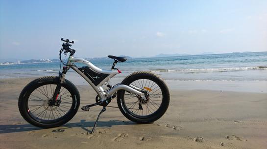 Bikes4Life Playa