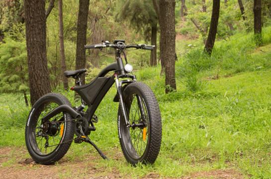 Modelo Fat Rider