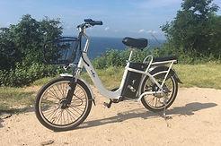 bicicleta eléctrica, multipropósito, bici eléctrica recorre hasta 100 km con una carga, ebike