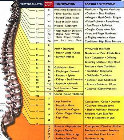 subluxation-chart.jpg