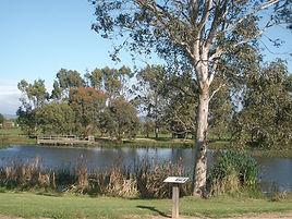 Heyfield-Wetlands-Lake.jpg