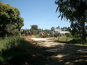 Heyfield---Heyfield-Wetlands-Horseriding