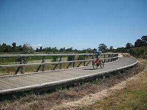 Heyfield---Heyfield-Wetlands-Bike-Riding